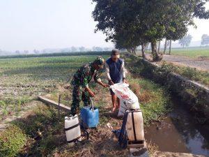 Serda Kussyairi Dampingi Petani Pupuk Tanaman Jagung